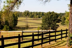 preparing your pasture for winter