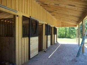 Custom 12 Ft. Shed Row Barn