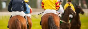 Horse News