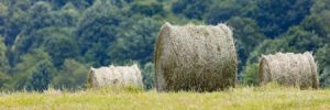 Properly Store Hay to Ensure Fire Free Farm