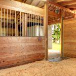 Bedding For Horse Barn