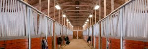 Lighting your horse stable