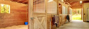 Horse Barns for Sale in TX