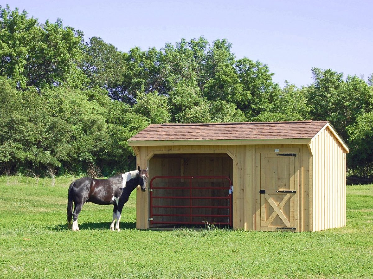 5 Advantages Of A Portable Run In Shed Deer Creek Structures