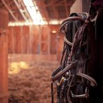 Portable Horse Barns for Sale in TX