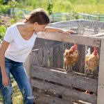 Prefab Chicken Coops for Sale near Houston TX