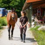 Prefab Portable Horse Barns for Sale in Texas